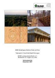BIBB Modellregion Berliner Wald und Holz Teilprojekt 4: Holz-Wald ...