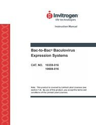 Guide to Baculovirus Expression Vector Systems (BEVS