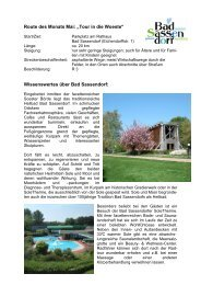 Woeste-Tour - Wo - Bad Sassendorf
