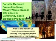 Portable Methanol Production Using Woody Waste - Department of ...