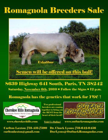 Bred Cow - Cherokee Hills