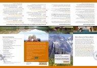 Urlaubsplaner für Allergiker - Ratiopharm