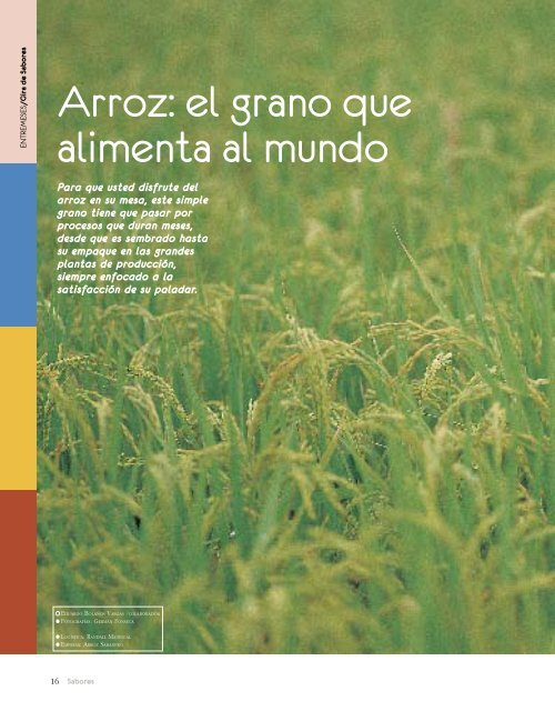 Arroz: el grano que alimenta al mundo - Arroz Sabanero