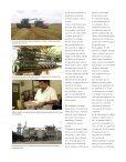 Arroz: el grano que alimenta al mundo - Arroz Sabanero - Page 3