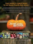 View Sussex County Magazine - Sussex County Chamber of ... - Page 2