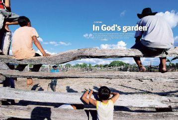 In God's garden - Guyana Birding