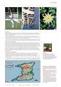 Trinidad & Tobago - Geodyssey - Page 7