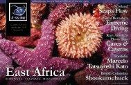 Tanzania - X-Ray Magazine