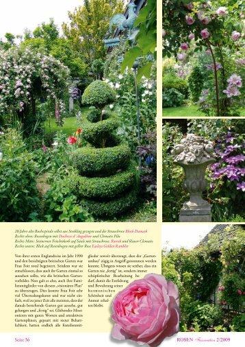 Seite 36 ROSEN Faszination 2/2009 - RDB Verlag