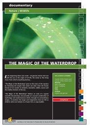 Wildlife THE MAGIC OF THE WATERDROP - Interspot Film
