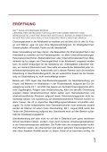 Chancengleichheit in der Arbeitswelt, 2008 (pdf, 315 kb - Page 6