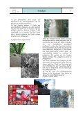 Weiterbildungen 2010 - Seite 5