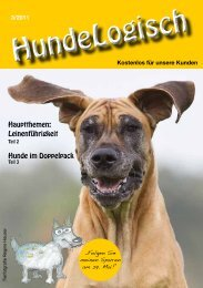 Hunde im Doppelpack - bei Hunde-logisch.de