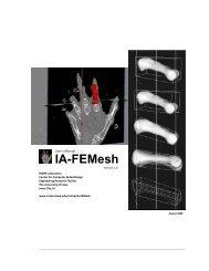 IA-FEMesh - Center for Computer Aided Design - University of Iowa