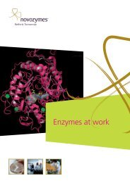 Enzymes at work - a brochure - Novozymes