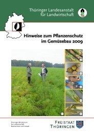 Hinweise zum Pflanzenschutz im Gemüsebau 2009 - Thüringer ...