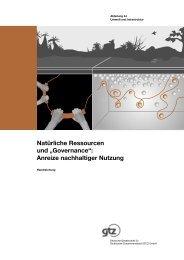 """Natürliche Ressourcen und """"Governance"""": Anreize nachhaltiger ..."""