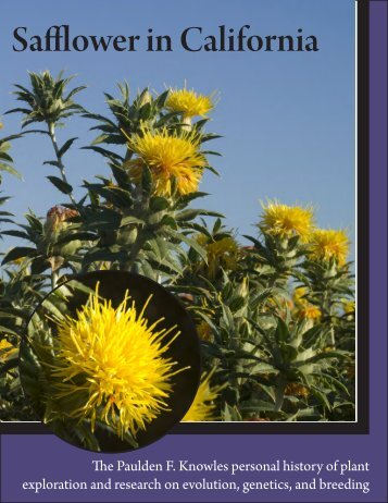 Safflower in California - University of California Cooperative Extension