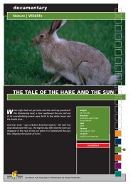 Wildlife THE TALE OF THE HARE AND THE SUN - Interspot Film