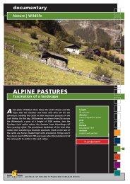 documentary Nature | Wildlife ALPINE PASTURES ... - Interspot Film