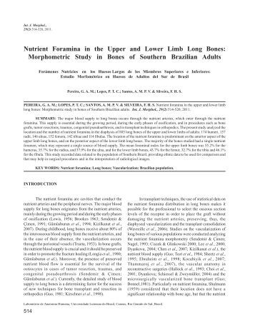 Nutrient Foramina in the Upper and Lower Limb Long Bones - SciELO