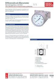 5220 DiP3Ch DiP3ChG Differenzdruck-Manometer