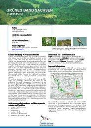 GRÜNES BAND SACHSEN - NABU-Stiftung Nationales Naturerbe