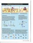 Mysteries of Mass Article in Scientific American - Particle Theory Group - Page 4