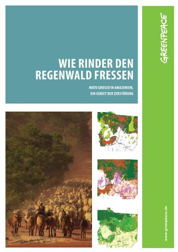 Wie RindeR den RegenWald fRessen - Greenpeace