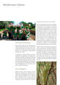 Mein Olivenbaum - Hapimag - Seite 4