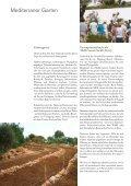 Mein Olivenbaum - Hapimag - Seite 6