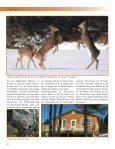 Auf den Spuren der Cape Breton Weißwedelhirsche - Immobilien ... - Seite 7
