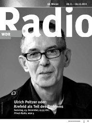 Ulrich Peltzer oder: Krefeld als Teil des Problems - WDR.de