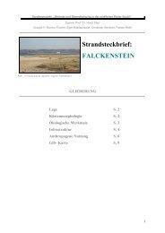 Strandsteckbrief - Die Kieler Bucht und ihre Strände