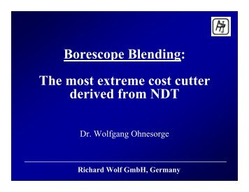 Borescope Blending: The most extreme cost cutter derived from NDT