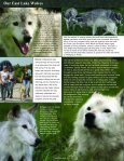 Farewell Socrates - Wolf Park - Page 4