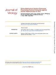 Ovine Adenovirus Vectors Overcome Preexisting Humoral Immunity ...
