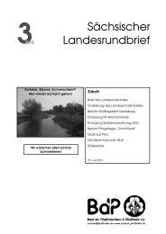 3 2010 - BdP Landesverband Sachsen - Bund der Pfadfinderinnen ...