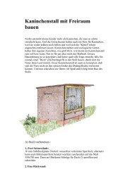 Kaninchenstall mit Freiraum bauen