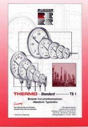 TH-STD-TS1 D.pdf - Rueger