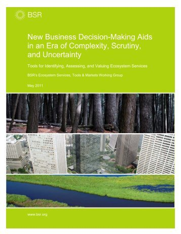 New Business Decision-Making Aids in an Era of Complexity ... - BSR