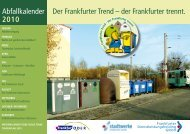 2010 - Frankfurter Dienstleistungsholding GmbH