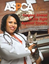 Forging Ahead in the Fight Against Cruelty - aspca