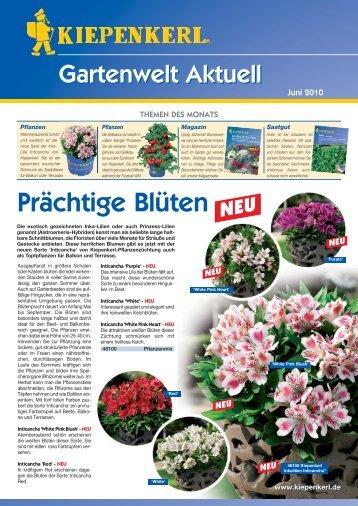 Pflanzen/Saatgut Bilder-Rätsel