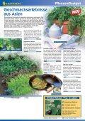 Pflanzen/Saatgut Bilder-Rätsel - Seite 4