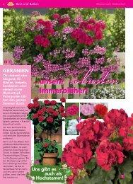 Immerblüher! ...unsere robusten - Blumenwelt Hödnerhof