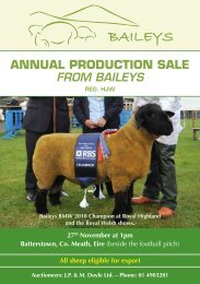 ANNUAL PRODUCTION SALE - Baileys Livestock