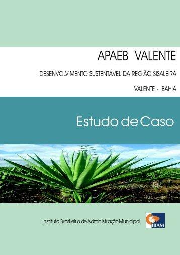 APAEB VALENTE Estudo de Caso - Ibam