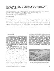 review and future issues on spent nuclear fuel storage