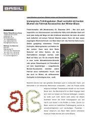 Immergrüne Frühlingsboten: Basil vertreibt mit bunten Blumen als ...
